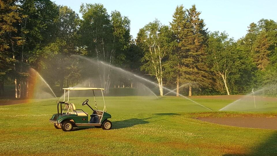 Une voiturette de golf sur un terrain de golf un jour d'été.
