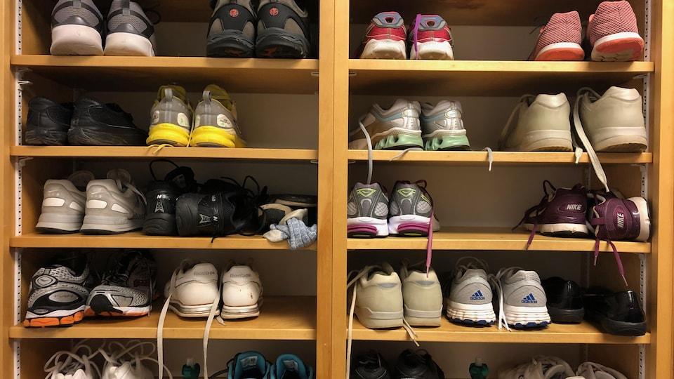 Des dizaines de chaussures sont rangées dans une armoire.
