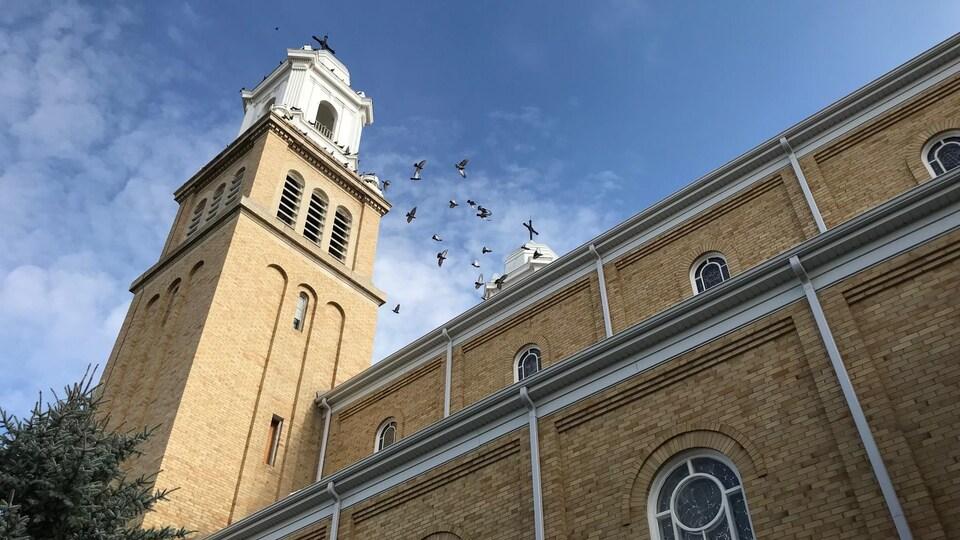 Un clocher de cathédrale en contre-plongée avec des oiseaux qui volent dans le ciel.