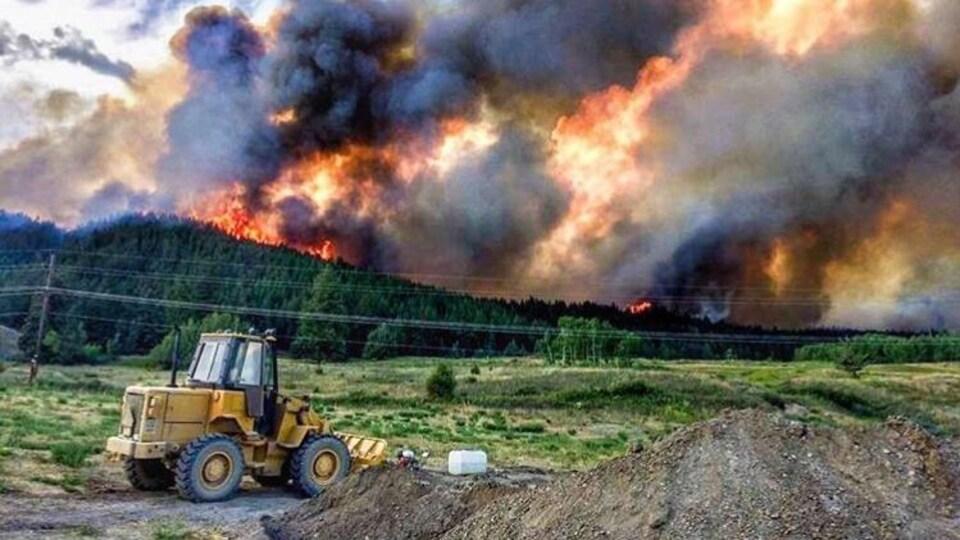 Des flammes et de la fumée surplombent une forêt en Colombie-Britannique