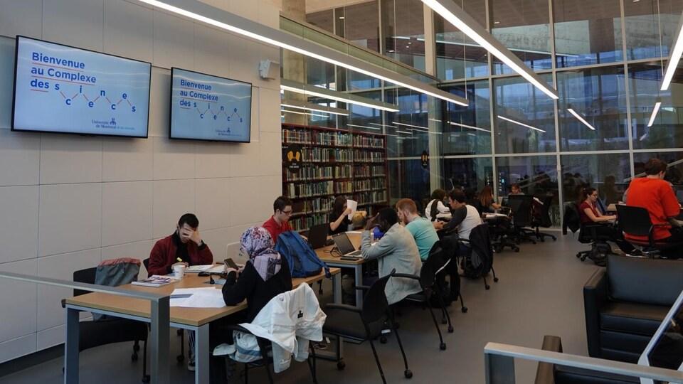 Des étudiants assis à des tables dans une bibliothèque.