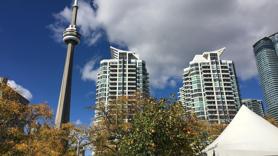 Photo de tours de condos près de la Tour CN.
