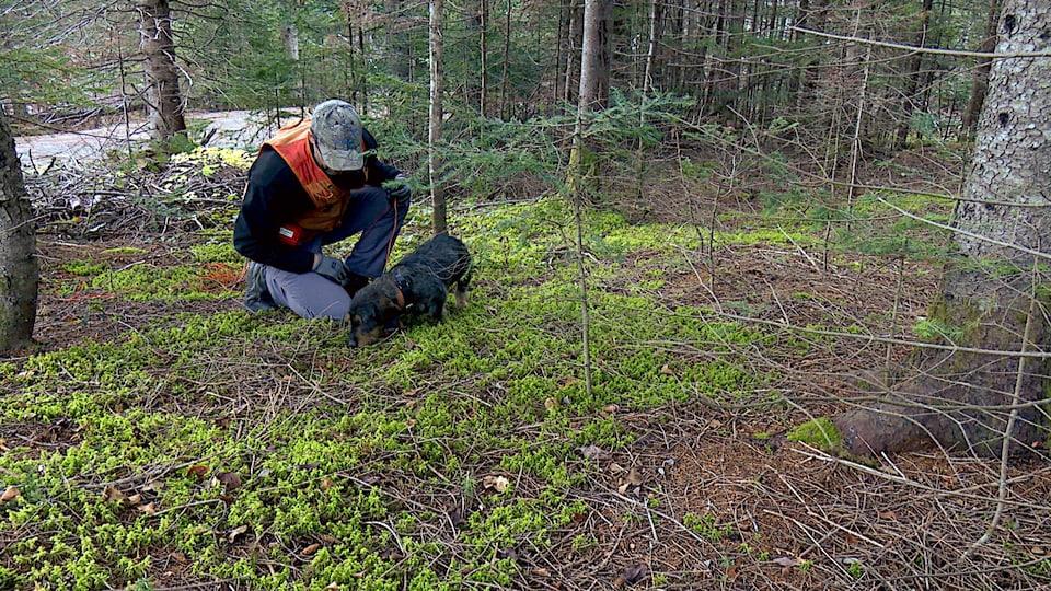Éric Gosselin et son chien font une recherche.