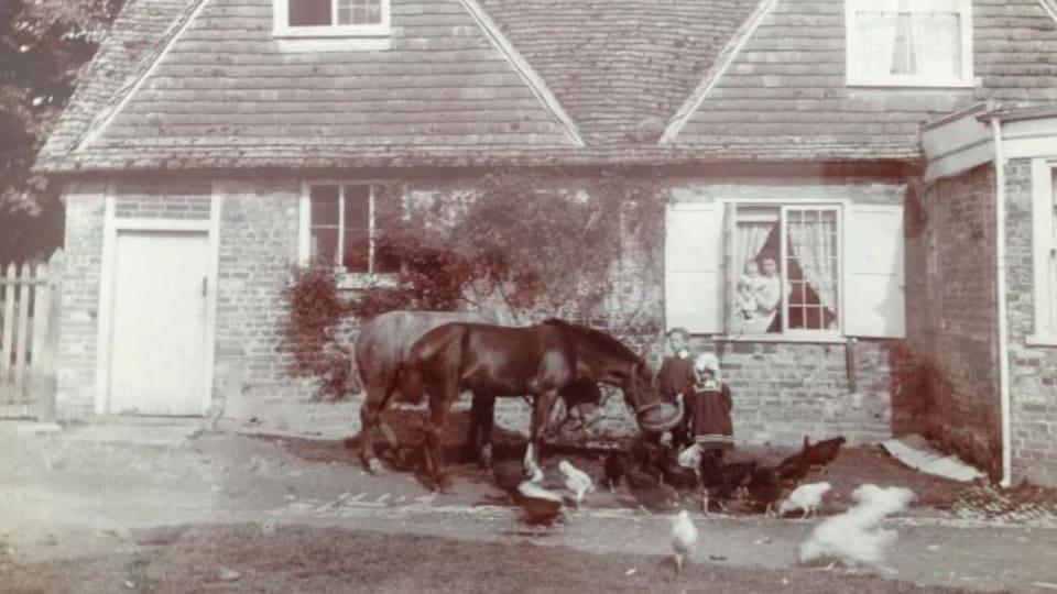 Une femme et des enfants sont entourés de poules et de deux chevaux devant une maison.