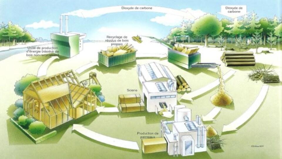 Schéma où l'on voit le circuit de production et d'utilisation du bois dans la construction.