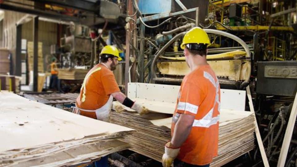 Des travailleurs avec des casques protecteurs jaunes manipulent des panneaux de contreplaqué dans une usine.