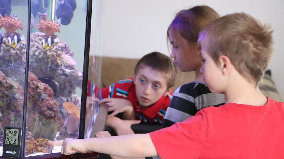 Trei copii observă un acvariu