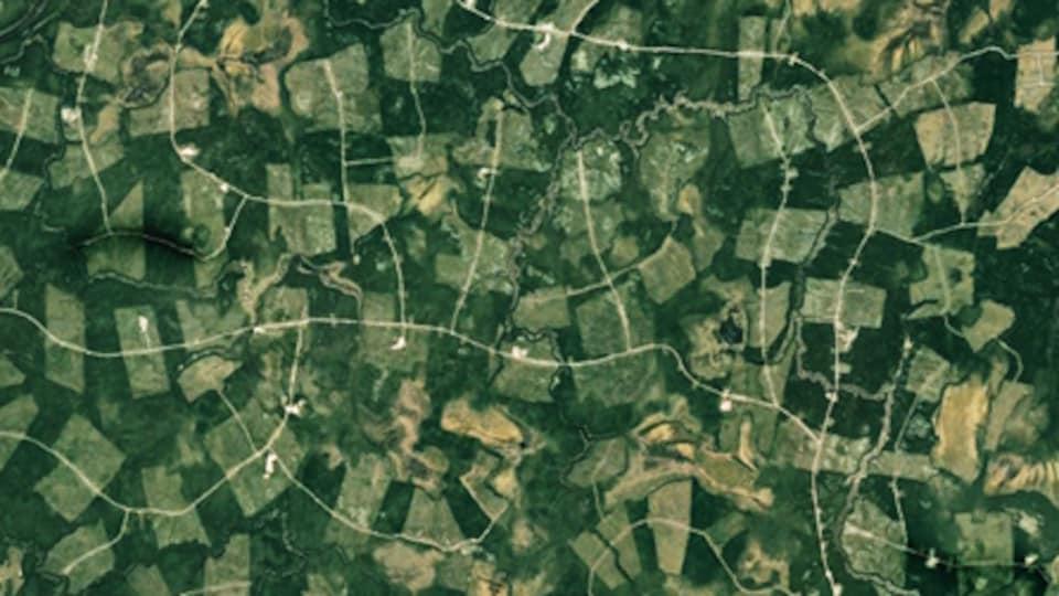 Vue aérienne de coupes en mosaîque et de chemins forestiers.
