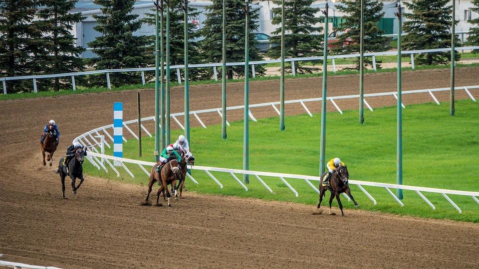 Cinq cavaliers et leurs chevaux courent dans un tournant de la piste.