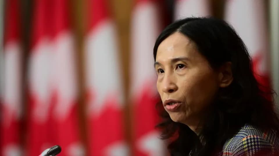 Chief Public Health Officer Dr. Theresa Tam provides an update on the COVID pandemic during a press conference in Ottawa on Tuesday, Nov. 17, 2020.