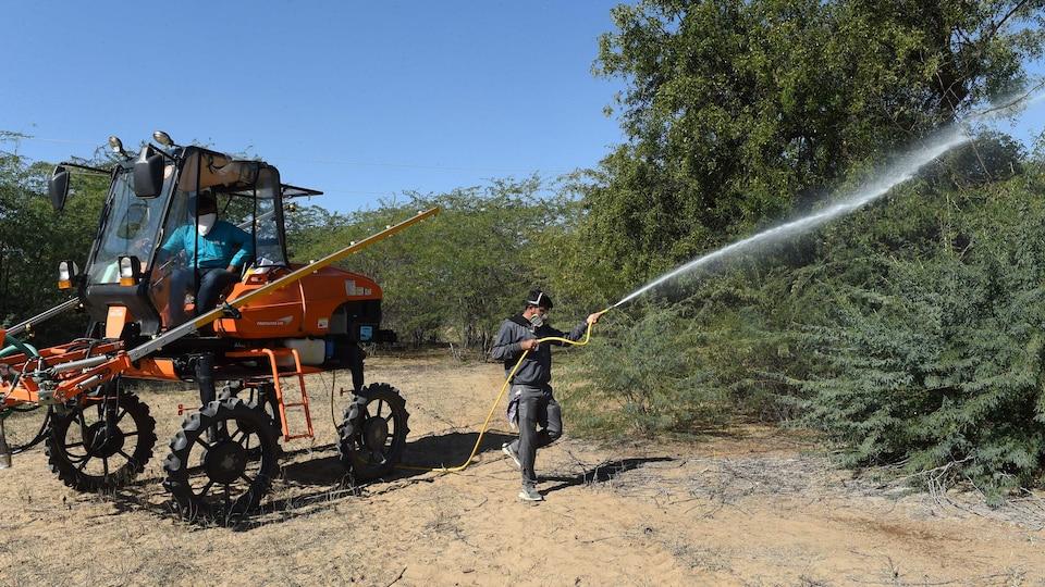 Un homme conduit un tracteur et un autre asperge des arbres.