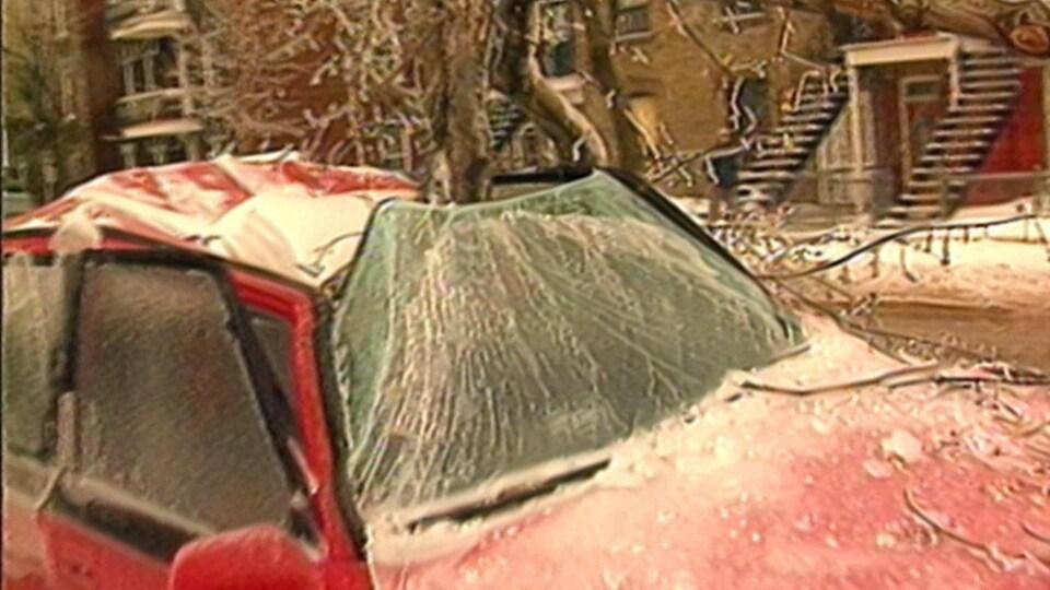 Une branche d'arbre cède sous le poids de la glace et transperce le toit d'une voiture dans une rue de Montréal.