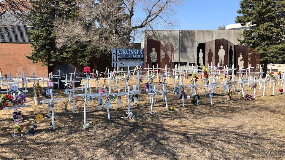 Des croix blanches installées sur un terrain.
