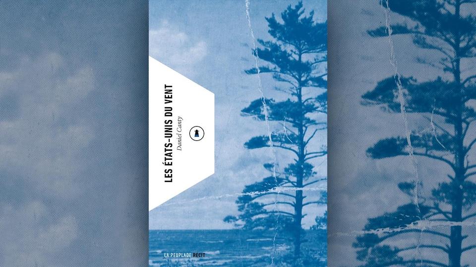 Photo en bleu et blanc d'un conifère très grand.