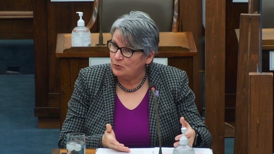 Darlene Compton, ministre des Finances de l'Île-du-Prince-Édouard, siégeant à l'Assemblée législative de la province.