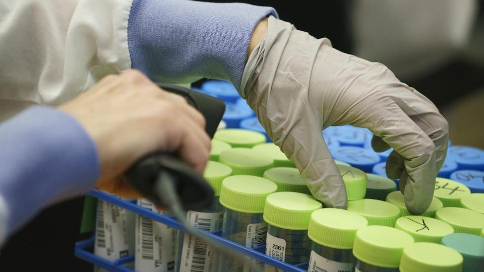 Une main gantée manipule des contenants.