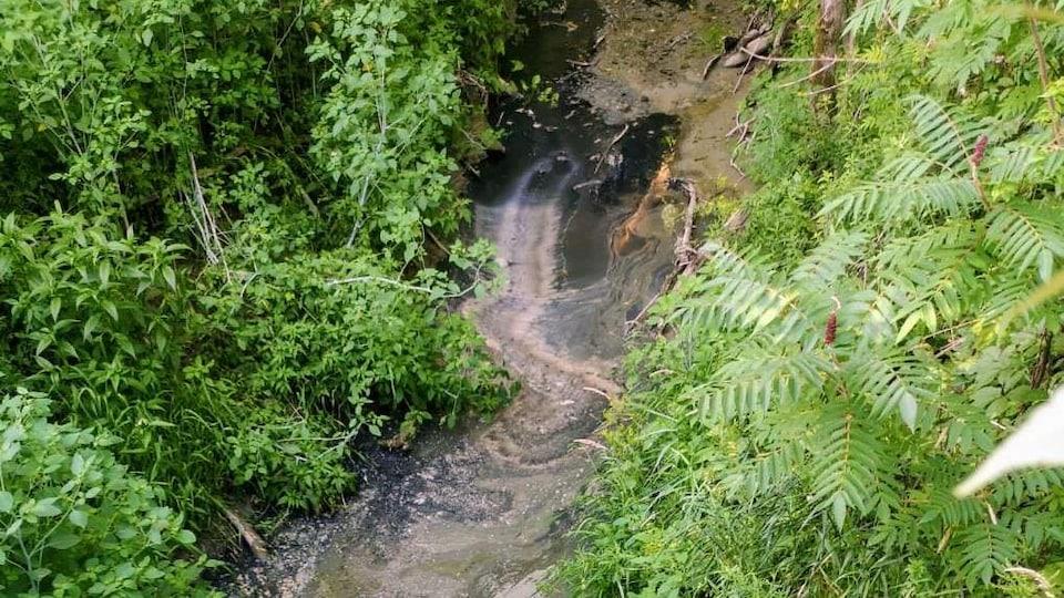 La pellicule noire s'est répandue dans le cours d'eau Gratton, qui se déverse dans un cours d'eau menant au lac des Deux Montagnes. Les images prises par les municipalités d'Oka et de Saint-Placide ont été prises à la jonction de cours d'eau près de la route 344 et du rang Saint-Jean.