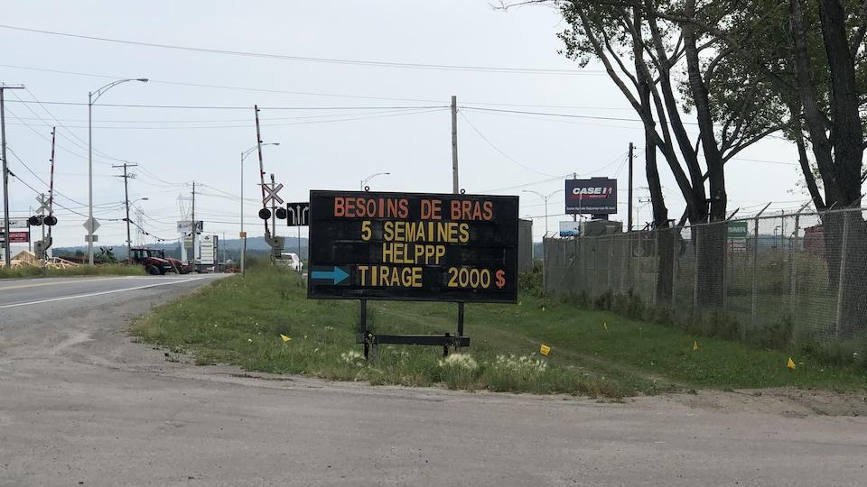 Un panneau en bordure de route sur lequel on peut lire : besoin de bras, 5 semaines, tirage 2000 $.