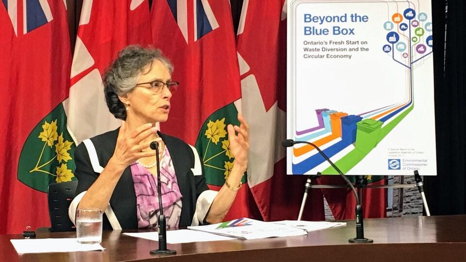 Dianne Saxe parle aux médias lors d'une conférence de presse à l'assemblée législative de l'Ontario.
