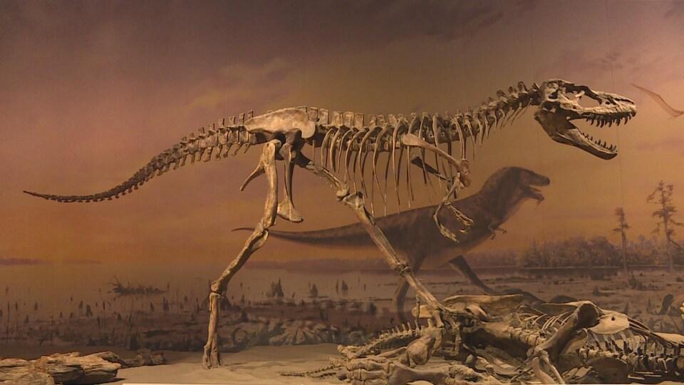 Un squelette de dinosaure.