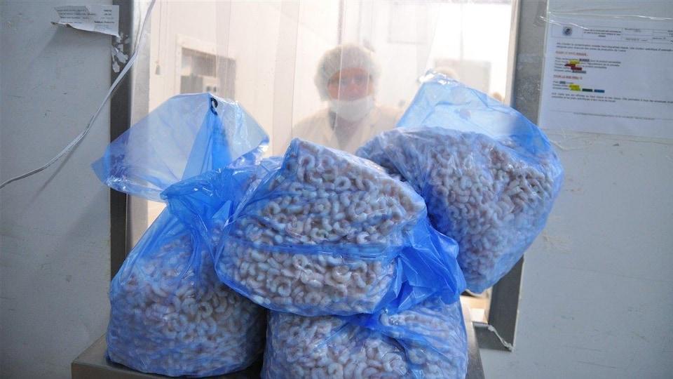 Des crevettes surgelées à l'usine Marinard