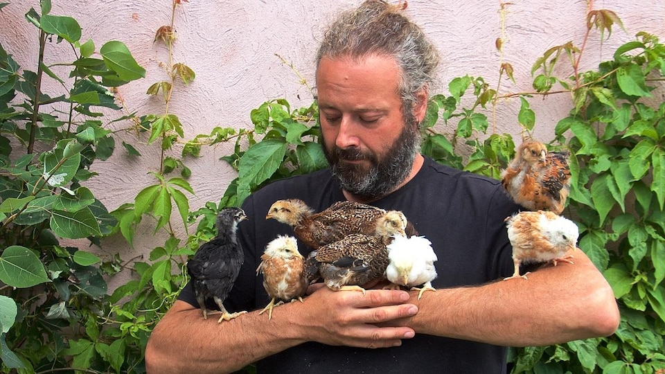 In front of a green wall a man holds young chickens in his arms