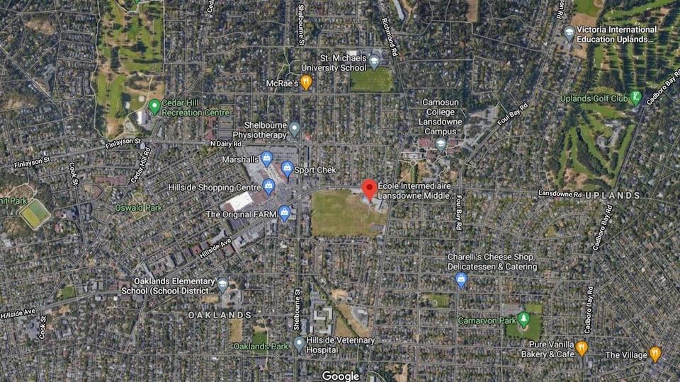 Une carte terrain de Google.