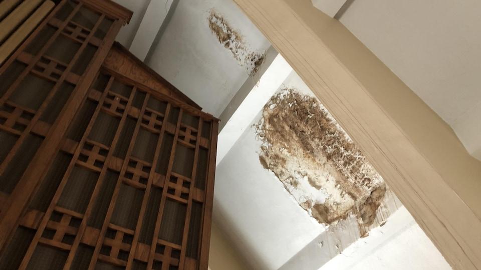 Dommages au plafond causés par des infiltration d'eau.