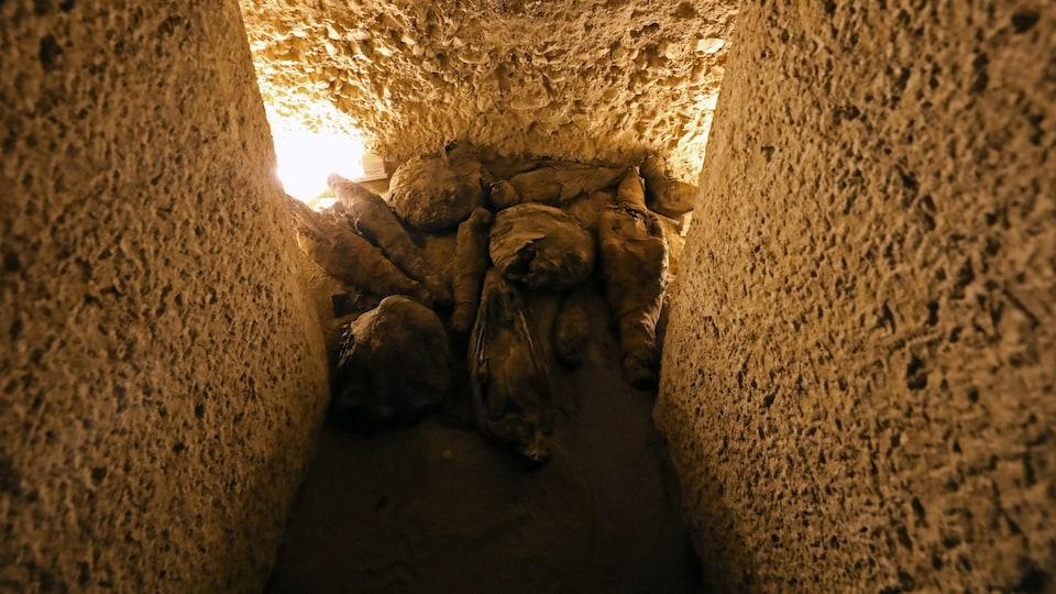 Des faucons momifiés et d'autres espèces d'oiseaux sont découverts à l'intérieur du site de sépulture nouvellement découvert à Al-Diabat, dans le gouvernorat de Sohag.