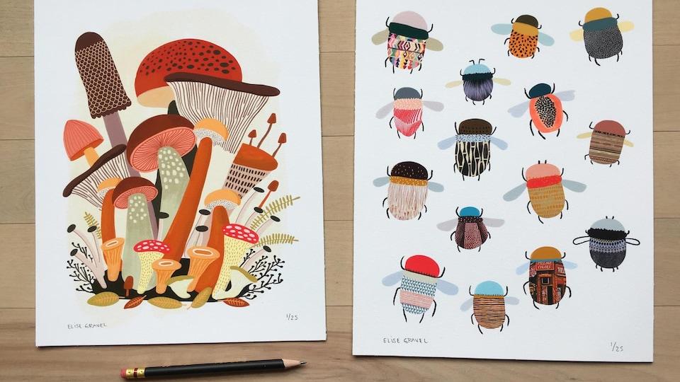 Des champignons et des insectes en dessin.
