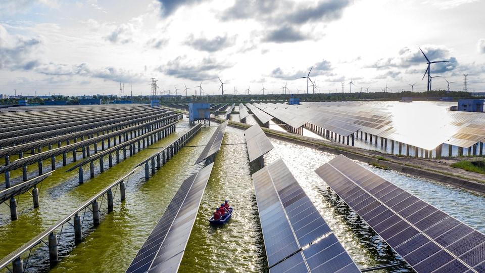Des panneaux solaires dans un marais et des éoliennes en arrière-plan.