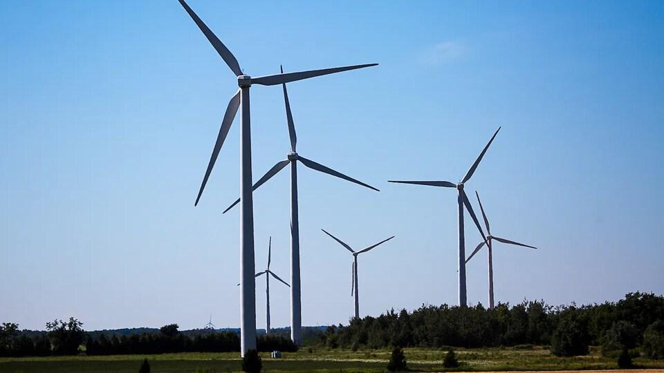 Des turbines éoliennes.