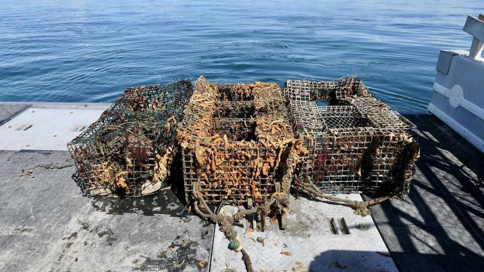Des cages pour la pêche rouillées et sales sont déposées sur le quai après avoir été repêchées.