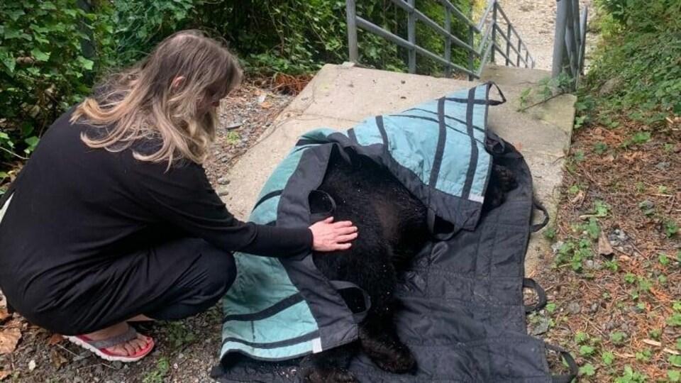 Une femme pose la main sur un ours mort recouvert d'une couverture.