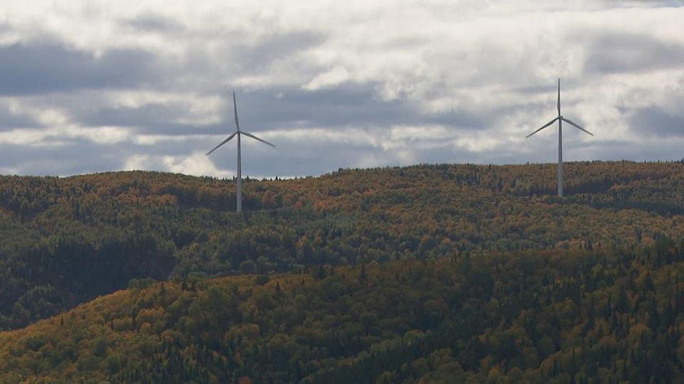 Deux éoliennes se trouvent au cœur d'une forêt à Matane.