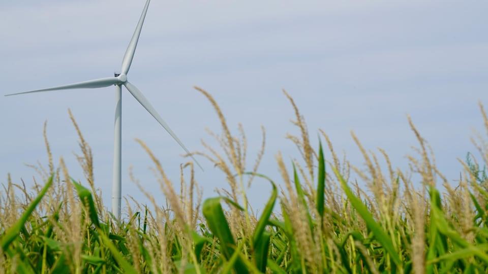Éolienne près de Windsor