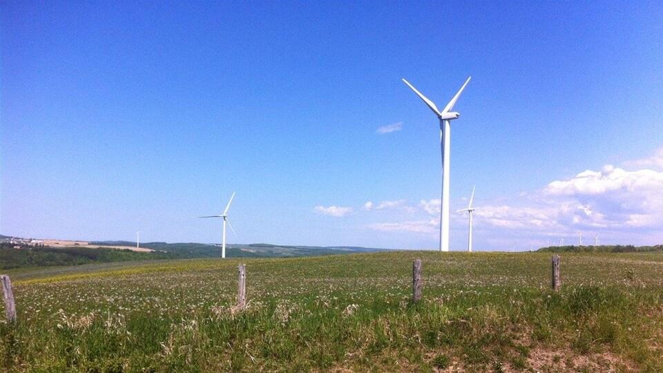 Parc éolien à Saint-Léandre