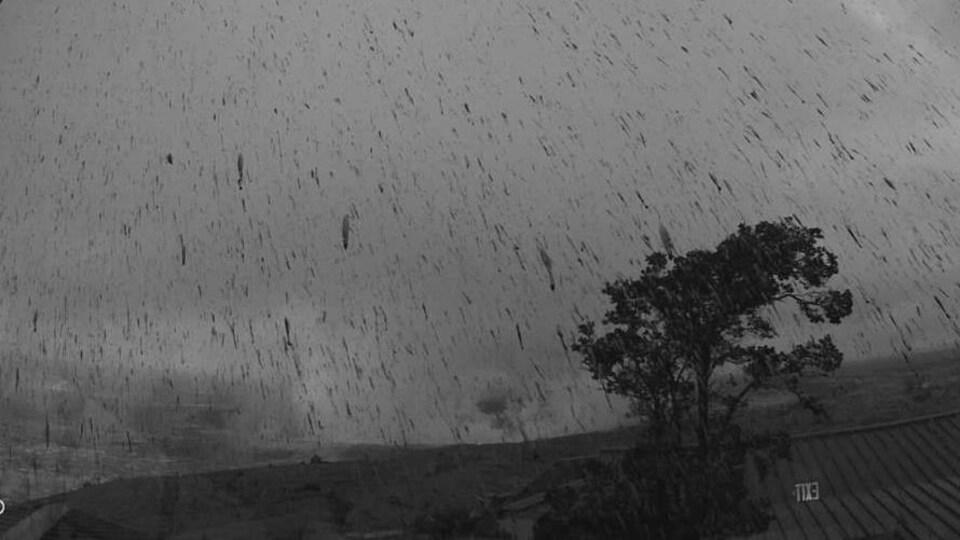 Une pluie de centres dans le ciel et sur un arbre après une explosion au sommet du volcan hawaïen Kilauea.