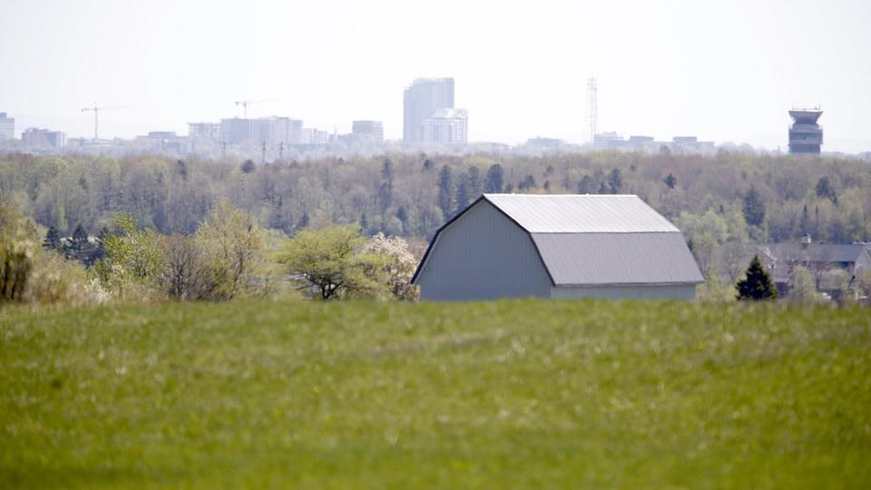 Un bâtiment agricole avec une ville en arrière-plan.