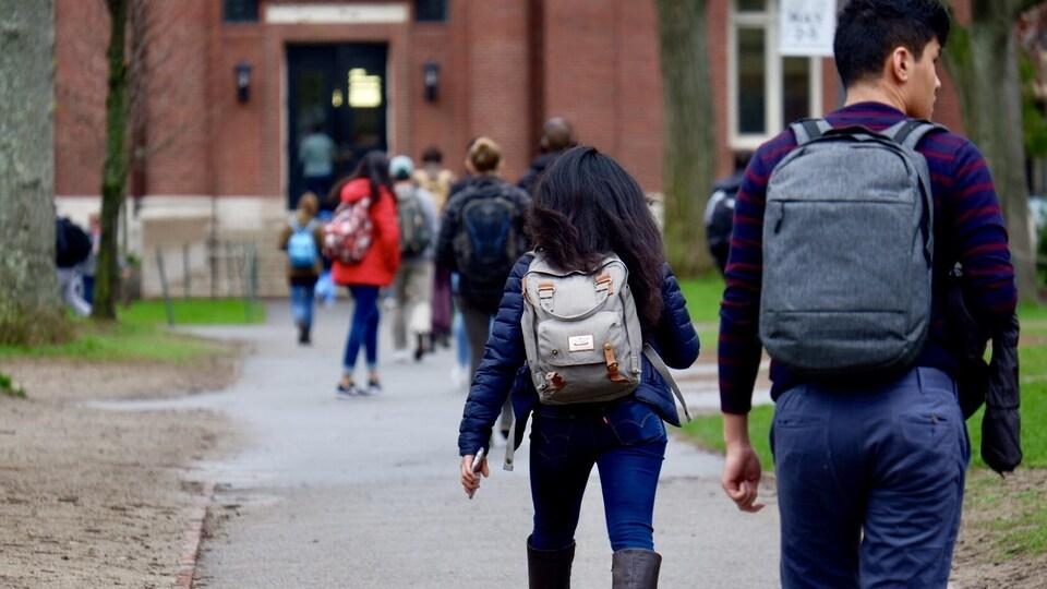 Des étudiants sur le campus de l'Université Harvard, dans la région de Boston.