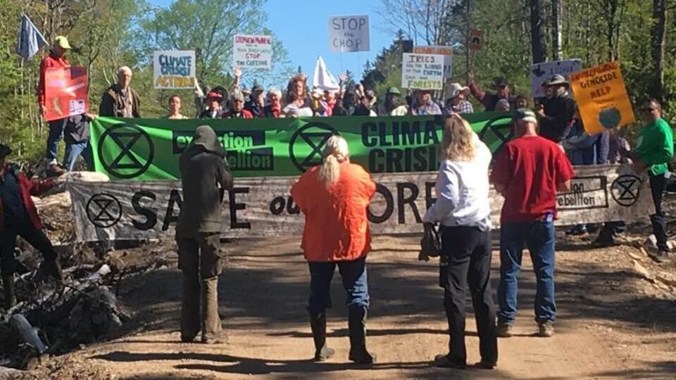 Manifestants sur un chemin forestier avec bannières et affiches.