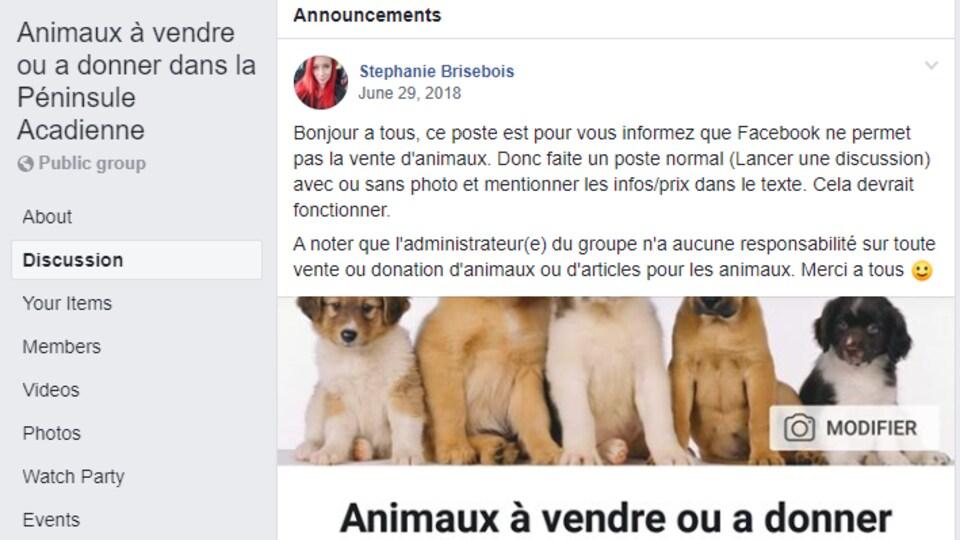 Interface d'un groupe facebook pour vendre ou donner des animaux.