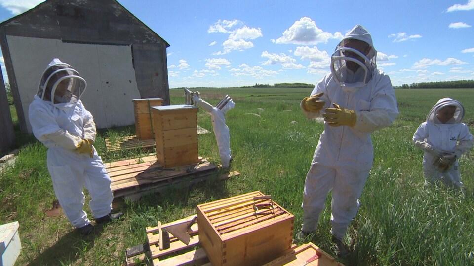 Quatre personnes de tailles variés en combinaisons blanches attroupés autour de ruches.
