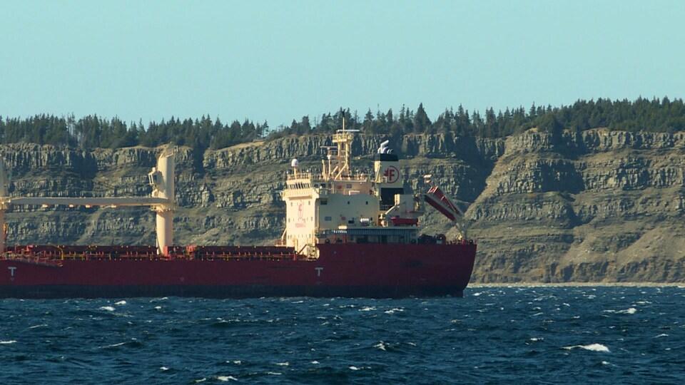 Un navire de marchandises.