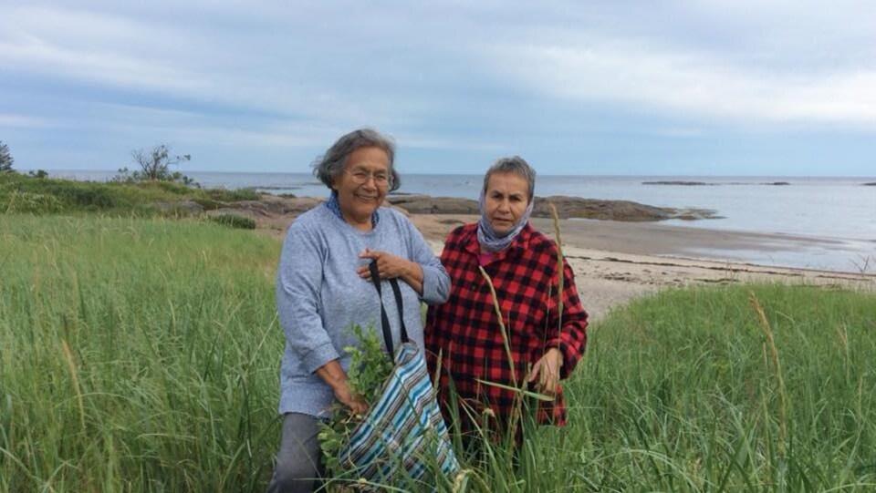 Évelyne St-Onge et Anne-Marie André cueillent des plantes sur le littoral nord-côtier.