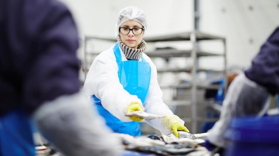 Une femme trie des poissons dans une usine.
