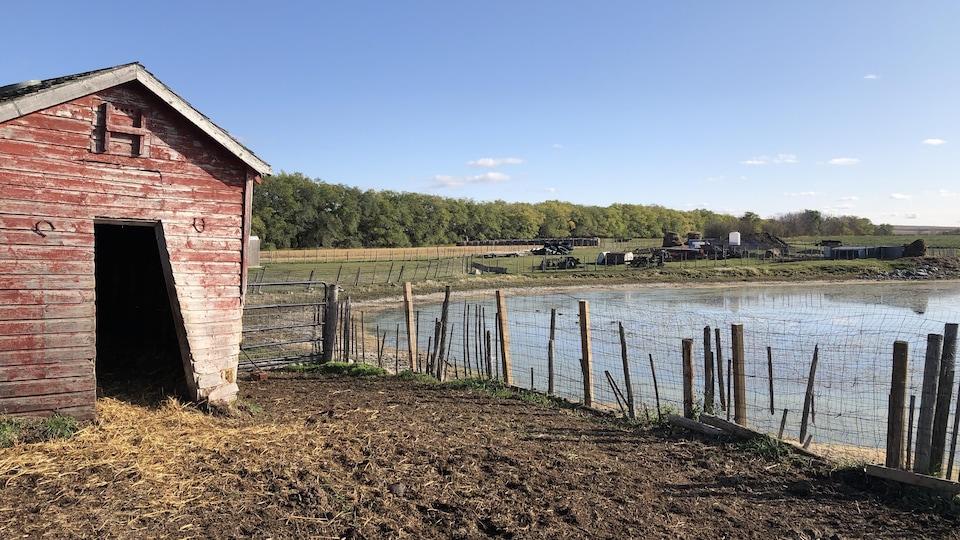 La ferme des Loiselle se trouve proche d'une étendue d'eau.