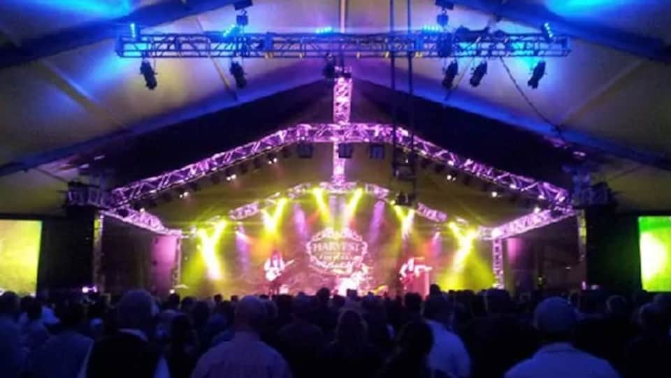 Des artistes donnent un spectacle sur une scène du festival