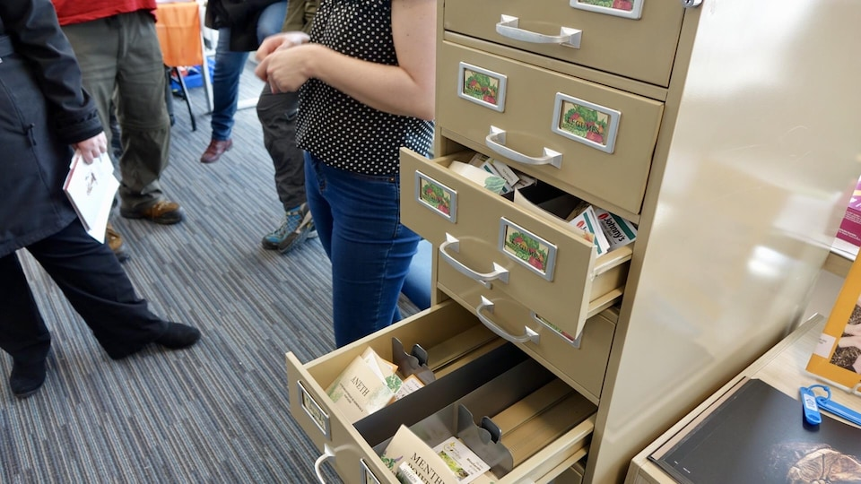 Les tiroirs d'un classeur sont ouverts. À l'intérieur, on voit des sachets de semences.