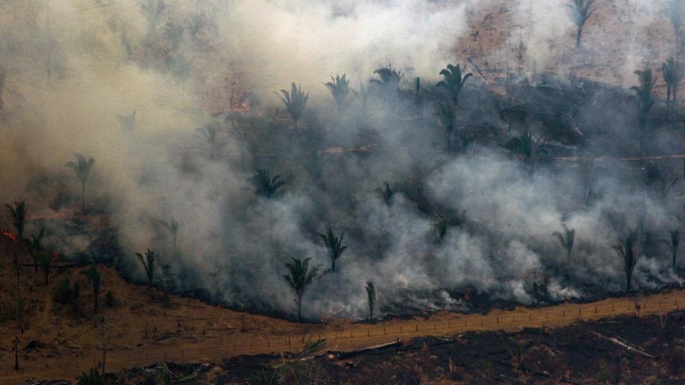 Une vue aérienne d'une partie de la forêt amazonienne en feu.